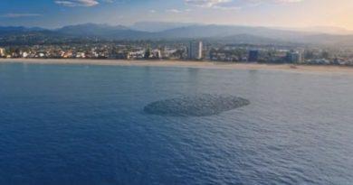 Recife artificial pode gerar um novo pico de surfe em Palm Beach